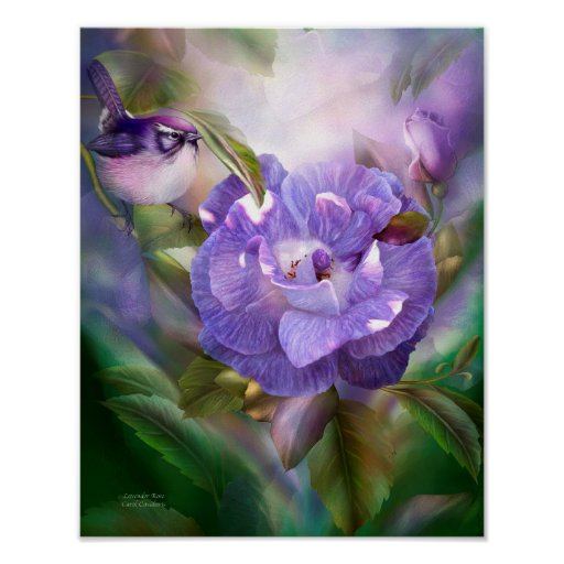 Lavender Rose Fine Art Poster/Print