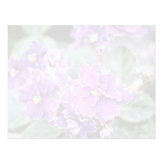 Lavender Saintpaulia 'Mr. Chips' (African Violet) Letterhead