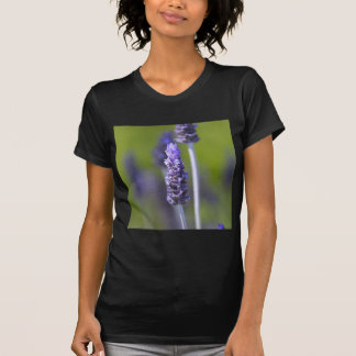Lavender T-shirts