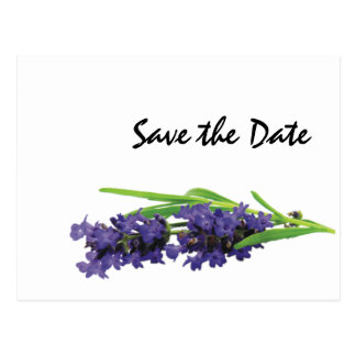 Lavender Wedding Day Theme Save the Date Postcard
