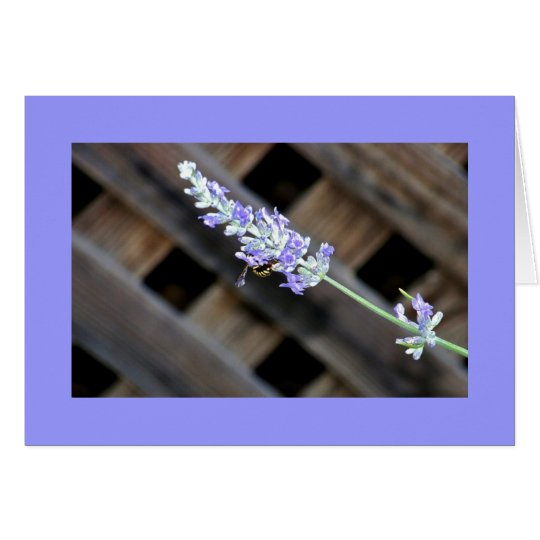 Lavender with bumblebee card