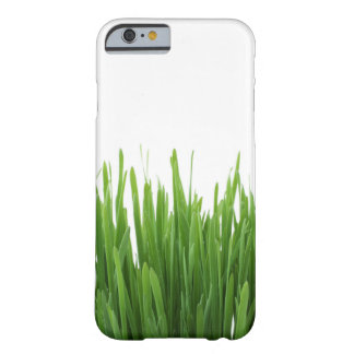 lawn iPhone 6/6s case