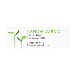 Lawncare Landscaping Lawn green sprouts