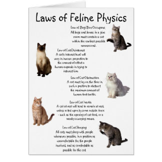 """Laws of Feline Physics"" Card"
