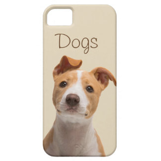 Layer for cellular with pretty photo of a dog iPhone 5 covers