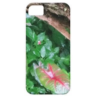 "Layer of Cellular ""Natureba "" iPhone 5 Case"