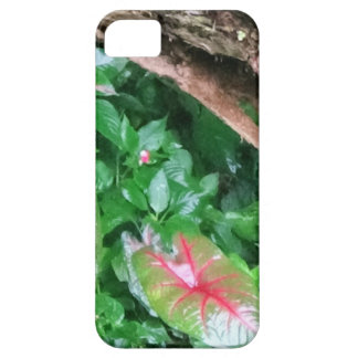 "Layer of Cellular ""Natureba "" iPhone 5 Covers"