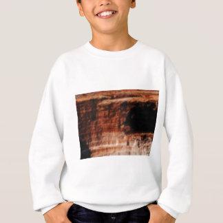 layered red rock cliffs sweatshirt