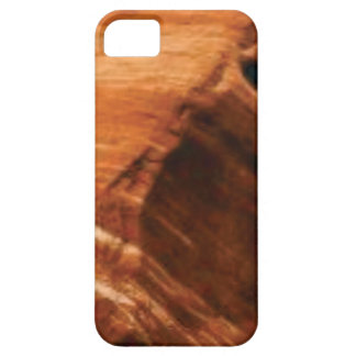 layered rock edge case for the iPhone 5
