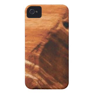 layered rock edge iPhone 4 case