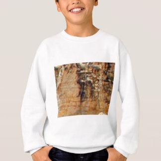 layers of cliff rocks sweatshirt