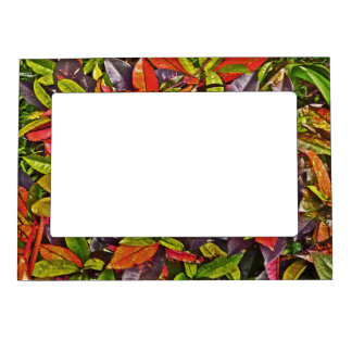 LAYERS OF COLORFUL LEAVES MAGNETIC PIC.FRAME MAGNETIC PICTURE FRAME