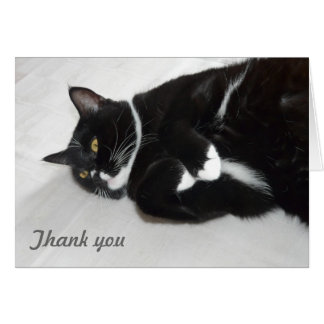 Lazy cat thank you card