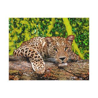 Lazy Leopard Canvas Print