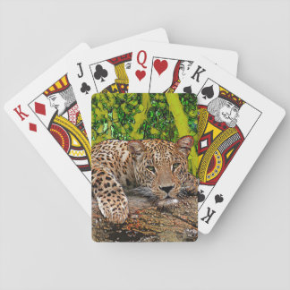Lazy Leopard Playing Cards