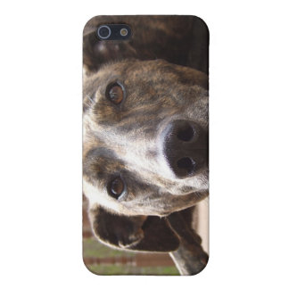 Lazy Lurcher Speck Iphone 4 Case