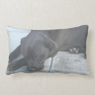 Lazy Midnight Just Wants To Snooze Throw Pillow