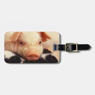 Lazy Piglet Luggage Tag