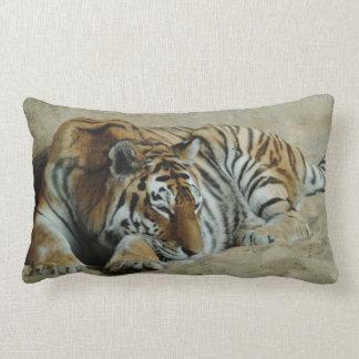 Lazy Tiger Stunning Big Cat Photo Lumbar Pillow