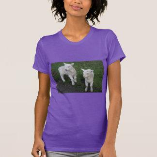 Le bébé mignon de ranch de ferme jumelle l'agneau t-shirt