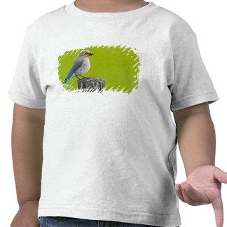 Le Canada, Colombie-Britannique s'approchent de 2 T-shirts