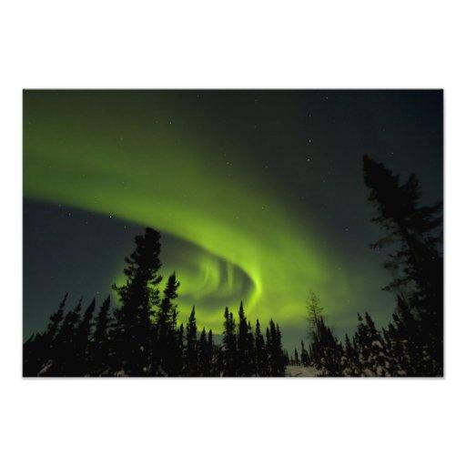 Le Canada, Manitoba. Vue des borealis de l'aurore  Impression Photo