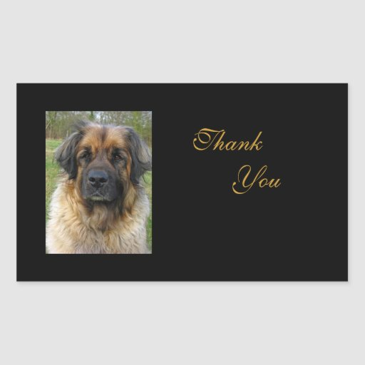 Le chien de Leonberger vous remercient des autocol Autocollant En Rectangle