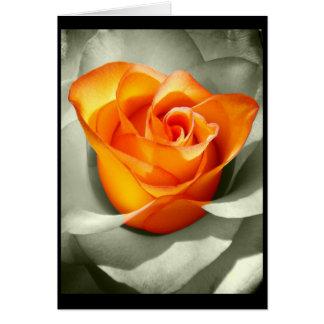 Le coeur d'une rose card