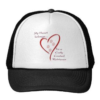 Le coeur enduit bouclé de chien d'arrêt appartient casquettes de camionneur