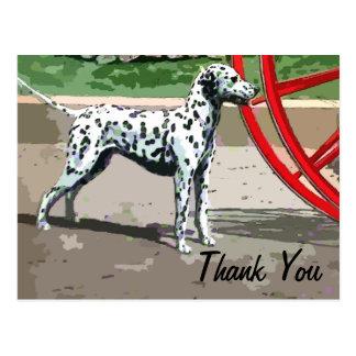 le Dalmate peint par cru vous remercient carte pos
