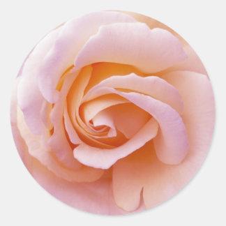 Le jardin anglais de pêche et de rose s'est levé sticker rond