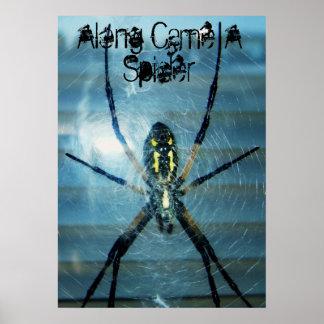 Le long est venue une araignée poster