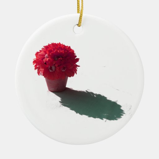 Le rouge fleurit le seau et l'ombre blancs ornement de noël