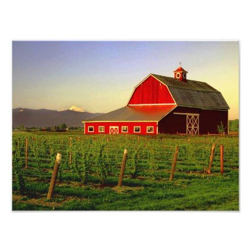 Le soleil de soirée sur une grange dans Skagit de  Photos Sur Toile