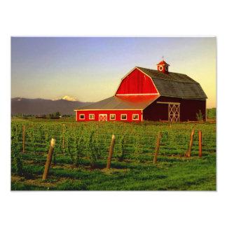 Le soleil de soirée sur une grange dans Skagit de  Photo D'art