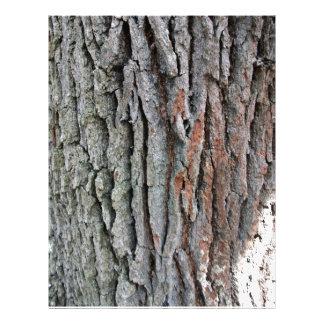 Le tronc d'un chêne vivant prospectus en couleur