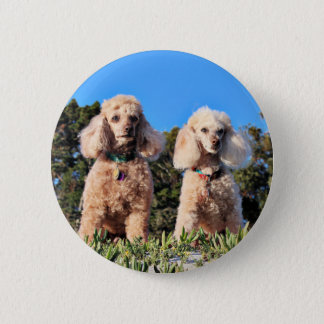 Leach - Poodles - Romeo Remy 2 Inch Round Button