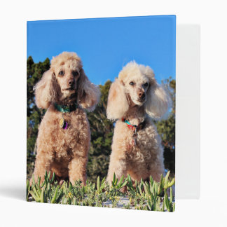 Leach - Poodles - Romeo Remy 3 Ring Binder