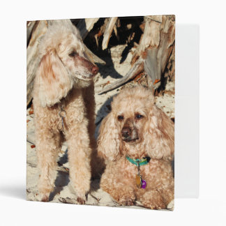 Leach - Poodles - Romeo Remy 3 Ring Binders
