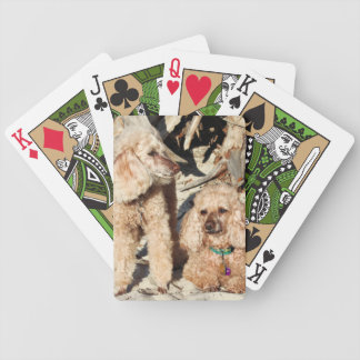 Leach - Poodles - Romeo Remy Bicycle Playing Cards