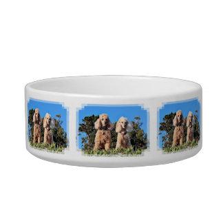 Leach - Poodles - Romeo Remy Bowl