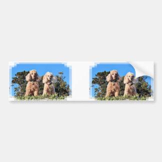 Leach - Poodles - Romeo Remy Bumper Sticker