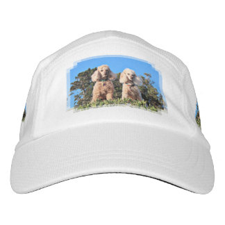 Leach - Poodles - Romeo Remy Hat
