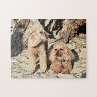 Leach - Poodles - Romeo Remy Jigsaw Puzzle