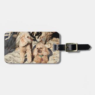 Leach - Poodles - Romeo Remy Luggage Tag