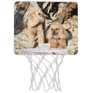 Leach - Poodles - Romeo Remy Mini Basketball Hoop