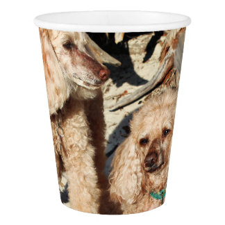 Leach - Poodles - Romeo Remy Paper Cup