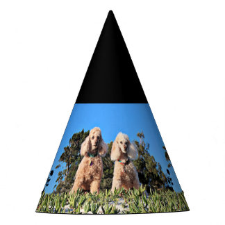 Leach - Poodles - Romeo Remy Party Hat