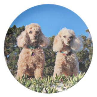 Leach - Poodles - Romeo Remy Plate