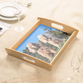 Leach - Poodles - Romeo Remy Serving Tray